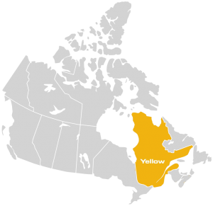 Chaussure Yellow bien implanté au Québec