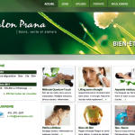 Site Web Salon Prana